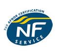 logo_NFS